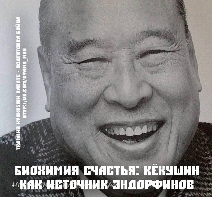 Биохимия счастья: Кёкушин как источник эндорфинов в подготовке бойца