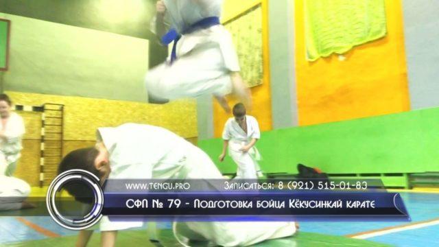 СФП № 79 - Подготовка бойца Кёкусинкай карате. Центр спортивной подготовки «Тэнгу Про» Мурманск