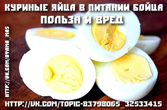 Куриные яйца в питании бойца. Польза и вред. Спортивное питание