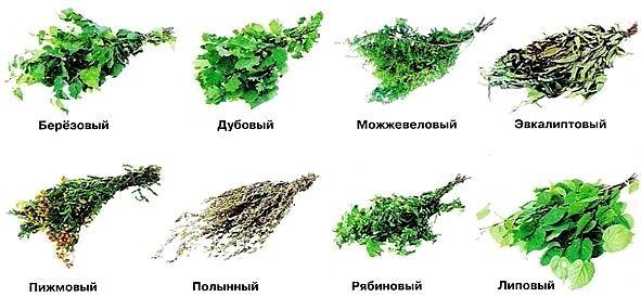 Полезные свойства веников: