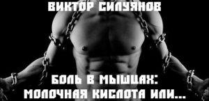 Боль в мышцах: Молочная кислота или... Виктор Силуянов