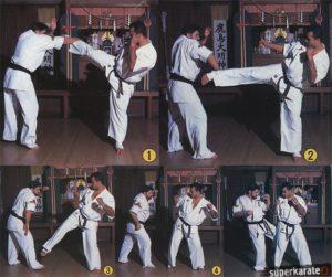 Боевая техника с использованием Brazilian Kick от Адемира да Косты и Франциско Филио