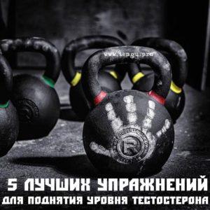 5 лучших упражнений для поднятия уровня тестостерона бойца